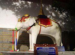 250px-White_elephant_Doi_Suthep