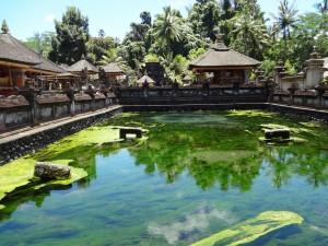 Bali 2014 230